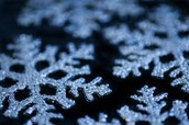 Explore Snowflakes and learn about Snowflake Bentley
