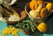 Corn squash and beans