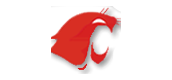 Clark High School - Cougar Call!