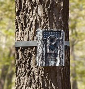 Connecting Kids to Wildlife Using Trail Cameras