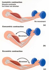 Contraction types