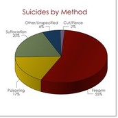 Percentages of Methods of Suicides