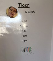 Tiger by Jovany