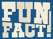 5 fun facts