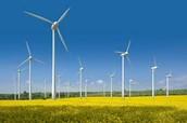 Where are turbines found