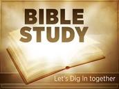 Adult Bible Studies