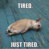 Getting tired?