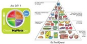 ".  ""My Plate"" compared to the ""Food Pyramid"""