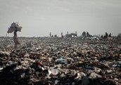This is what will happen if you don't clean up your trash!