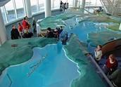 Great Lakes Exhibit