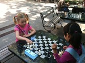 Summer Chess Fun & Training Camps