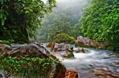 Kayaking & Riverside hiking