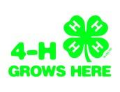 NEW DAWES COUNTY 4-H T-SHIRTS!