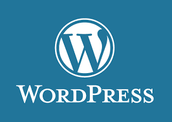 Blogging   (Word Press)