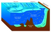 deep circulation and water masses