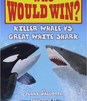 Whale vs Shark