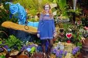 Wonderland!!