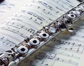 Fun Flute Facts!