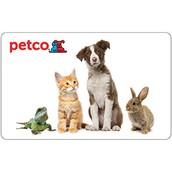 Some Petco Animals
