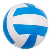 Learn the basics of volleyball before you enter junior high.