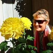 Jill Elberson