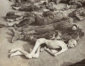 The deaths of Ravenbrück concentration camp