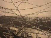 Barbed Wire Uses in World War I