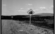 Un camino, para algunos un un lugar, para otros no.