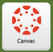 Canvas Tip of the Month - Embedding a Google Document