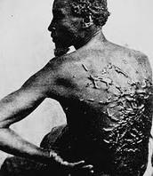 Jefferson Fought Against Slavery