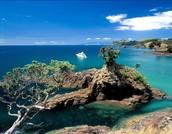Waiheke Island!
