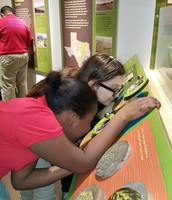 5th Grade Perot Museum Field Trip