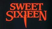 Sweet sixteen feestje dat ontaardt in een nachtmerrie
