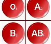 קבוצות סוגי הדם