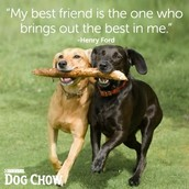 """""""My best friend is the one who brings out the best in me"""""""