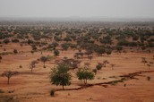 Desertifica-tion in the Sahel