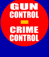 What are gun control laws?