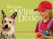 Winn Dixie's party