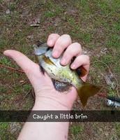 A fish i caught