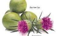 Растительные ингридиентв