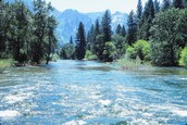 Magnificent Merced River