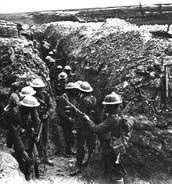 Why did World War I Start?