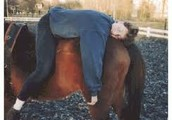 Paardrijden als therapie