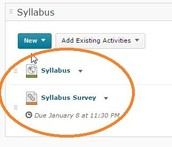 Scroll down and you will see links for the syllabus and survey.