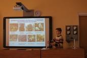 Секция естествознания и валеологии