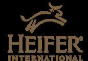 Contact Heifer International
