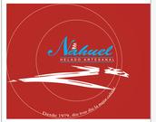 HELADO HARTESANAL - Especial Delivery
