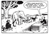 Standardized Assessments are not enough.