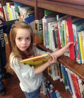 A KPS kindergartner searches for the perfect book to check out