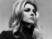 Sharon Tate Murder Trial Will Take New Judge